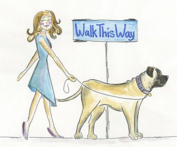 Home - Professional Dog Walking and Pet Sitting in Sarasota FL